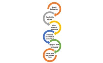 NLP six step reframing