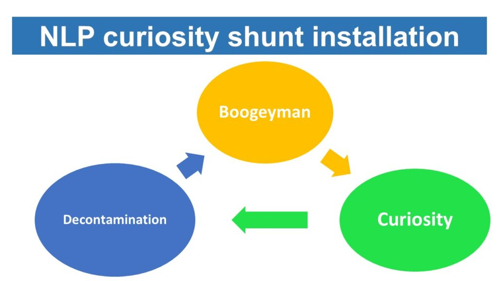 NLP curiosity shunt installation